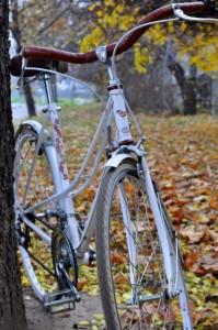 mucikli
