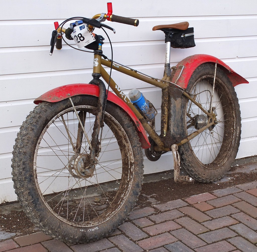 saras FAT bike