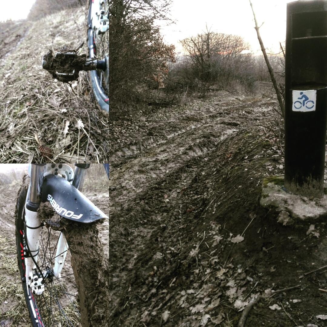 Budakeszi parkerdő dagonyázós tekerés