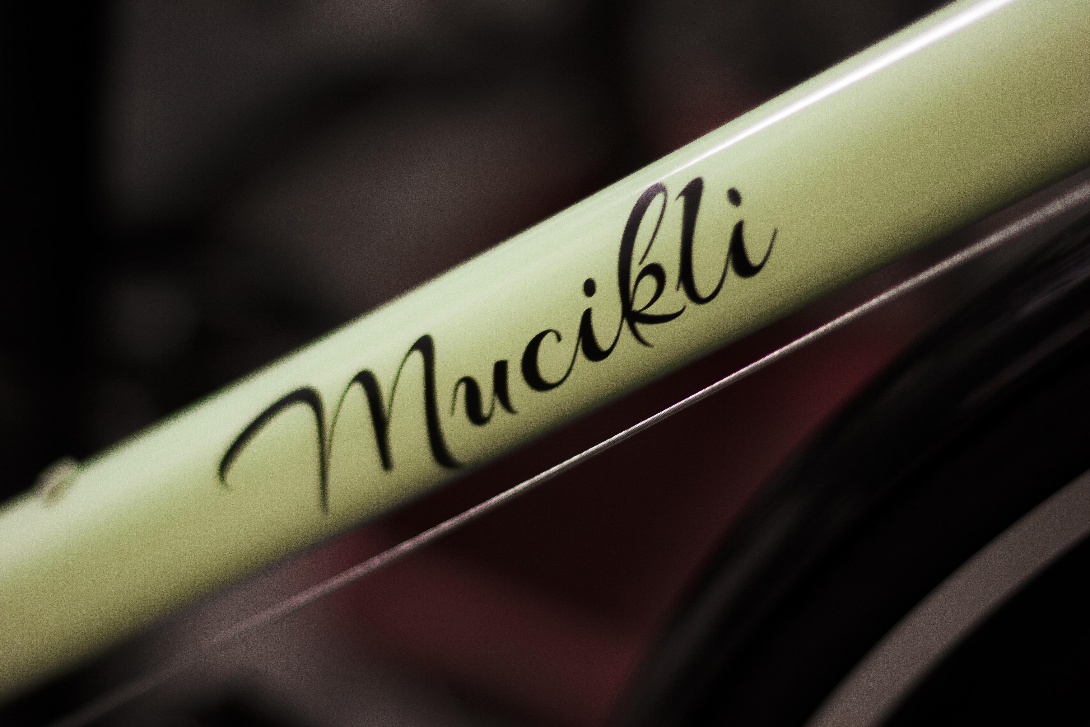 mucikli logo menta váz