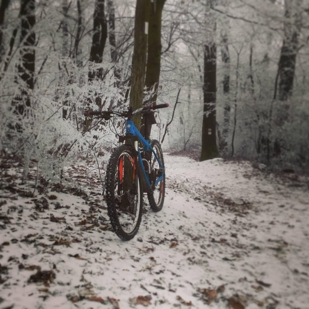Téli bringás kép erdőben