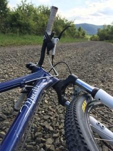 Mucikli 29er a neki való közegben