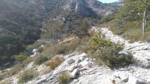 Vidova gora - Bol MTB