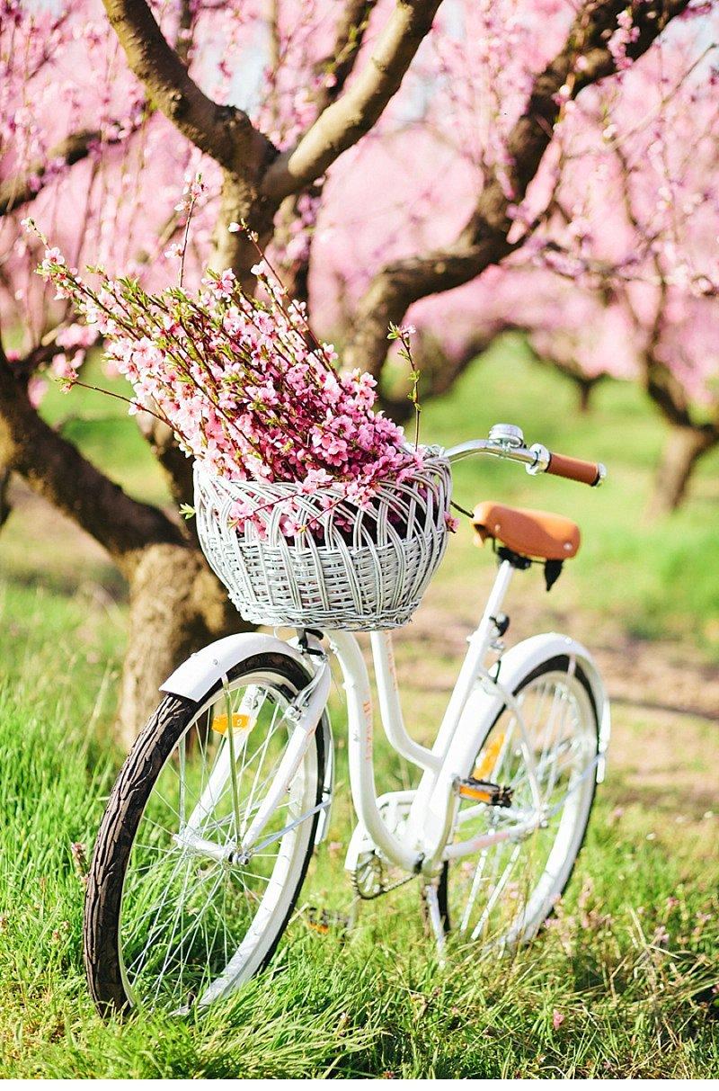 Tavaszi virágos